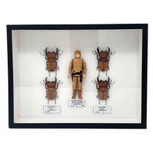 Luke Skywalker by Benjamin Pietri